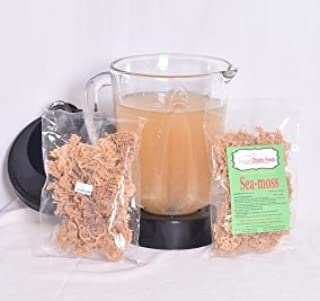 1 3oz Pack Sea Moss Dried/Raw-Turn Irish Moss (Dr. Sebi Recommended) 100% Wildcrafted-from The Caribbean