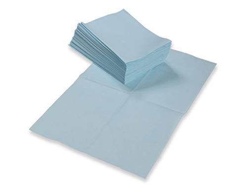 500 Stück Einweg/Einmal Reinigungstuch Putztuch Wischtuch, gefaltet, verpackt im Karton - für Industrie, Büro, Haushalt, Apotheke, Arztpraxis, Kosmetikinstitut