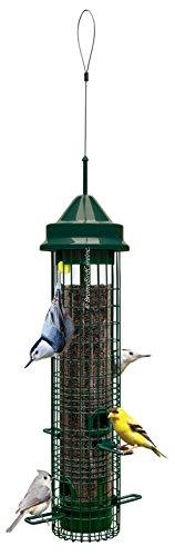 Brome Bird Care - Squirrel Buster Classic Bird Feeder, 21' (1015-V01)
