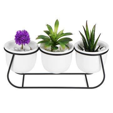 DyNamic Keramische Vetplant Bloempot Bonsai Houder Home Tafelblad Tuin Decor Met Standaard - Zwart