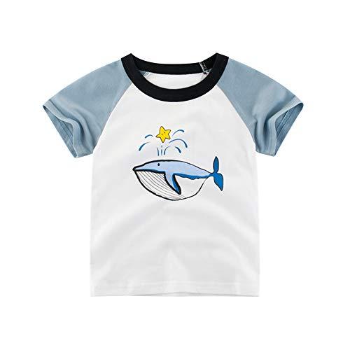 T-Shirts Bébé, Bébé Haut, Bébé Garçon T-Shirts, Bébé Fille T-Shirts - DOTBUY 100% Coton Voiture Imprimer Tops Tunique - Ete Manches Courtes Fille Garçon Cadeau (Aqua Blue Whale,100cm)
