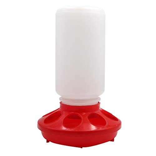 MACGOAL Automatic Poultry Feeder Small, Waste Free Chicken Feeder Jar, Baby Chick Feeder for Birds Pigeon Quail 1 Quart (Red and White)