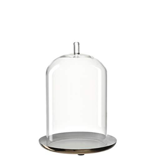 LEONARDO - Tulipano - Glashaube mit Teller im Geschenkkarton - Metall/Glas - D 14cm