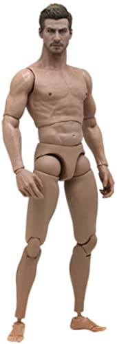 Hot Toys TrueType - 1 6 Scale Action Figure Body  New Generation - Caucasian Male (Muscular Body Version)