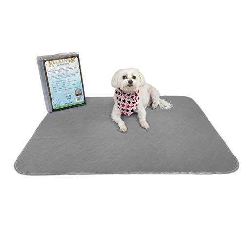 Kluein Pet Washable Pee Pads for Dogs, 2 Pack L 34x36 Grey, Reusable Puppy Pads, Fast Absorbing Wee Mat; for Playpen, Housebreaking, Indoor Potty Training, Whelping, Incontinence, Travel