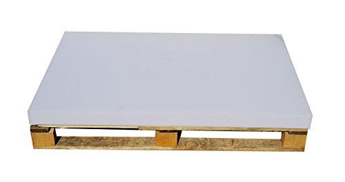 Master Palettenkissen, Palettensofa, Palettenpolster, Matratzenkissen (120x80x8cm) Schaumstoff für Europalette, Hundekissen, Auflage (Schaumstoff ohne Bezug) (120x80x10)