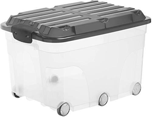 Rotho Roller 6 Aufbewahrungsbox 57l mit Deckel und Rollen, Kunststoff (PP) BPA-frei, transparent/anthrazit, 57l (59,5 x 40,0 x 37,0 cm)