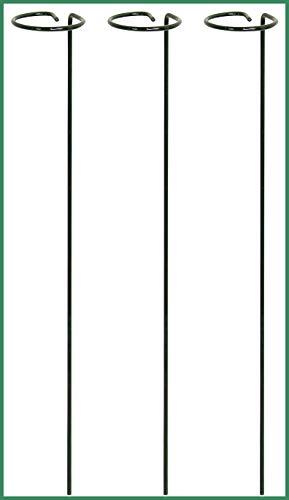 Novatool 3X Doldenstützen   Stahldraht I grün 40 cm Ø 6 cm I Rankstäbe Pflanzstäbe Stützstäbe mit Reifen Blumenstütze Buschstütze Pflanzenstütze rund Blumenstütze Pflanzstöcke Rankhilfe Pfingstrose