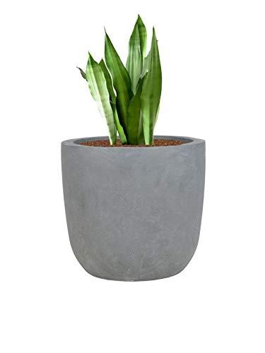 Pflanzwerk® Pflanzkübel Cup - Blumentöpfe Übertöpfe 27cm Ø GRAU *Frostbeständige Blumenkübel* *UV-Schutz* *Deutsche Pflanzenkübel Qualität*