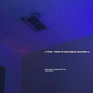 3 VETE / TODO LO QUE MIRAS (MASTER 3) (Demo De Un Experimento De Cuarentena)