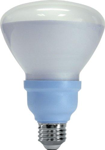 GE Lighting 61164 Reveal CFL 15-Watt (65-watt replacement) 660-Lumen R30 Floodlight Bulb with Medium Base, 1-Pack