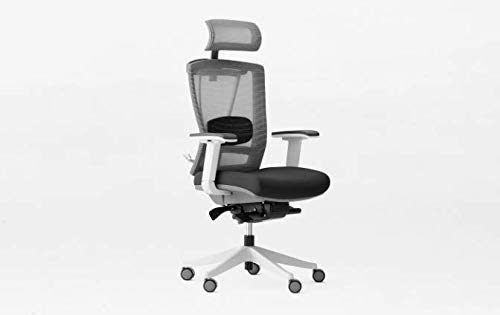 Autonomous Ergo Chair 2 - Premium Ergonomic Office Chair - 7-Way Adjustable Angle Chair (Black and White)