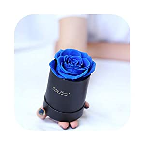 Dreamture Real Preserved Rose Eternal Flower Hug Bucket Gift Box Immortal Rose Birthday Valentines Day Gift for Girlfriends/Mum/Daughter-Small 03