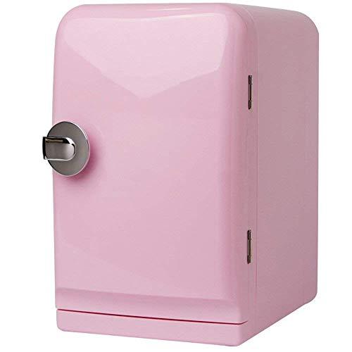 LYJ refrigerador del coche 4L, doble propósito refrigerador mini coche, 220V AC / 12V de doble uso, caliente y frío