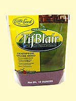 Centipede Grass Seeds'Tifblair Certified' 1 LB - 4000 Sq. Ft. Coverage