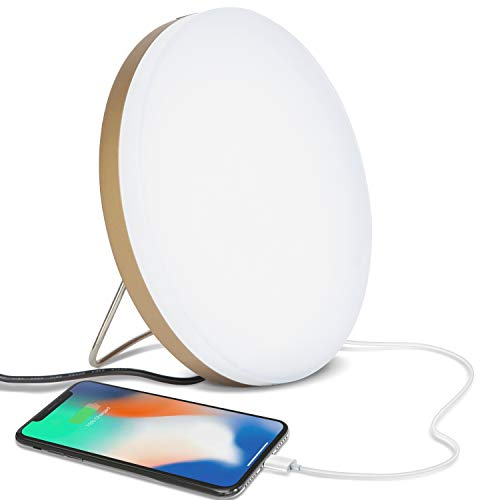Read About Brightech Light Therapy Lamp with Built-in USB Port for Charging - 10,000 LUX, LED UV Fre...
