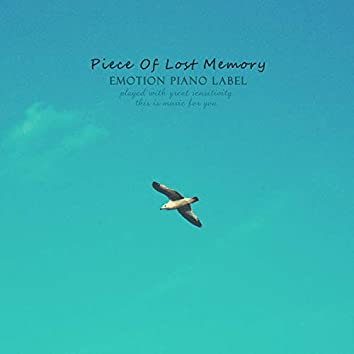 Piece Of Lost Memory