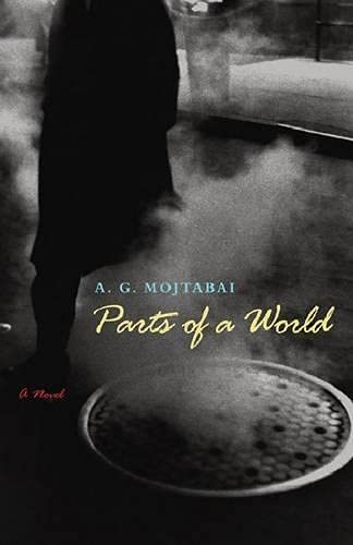 Parts of a World: A Novel (Tdriquarterly Fiction)