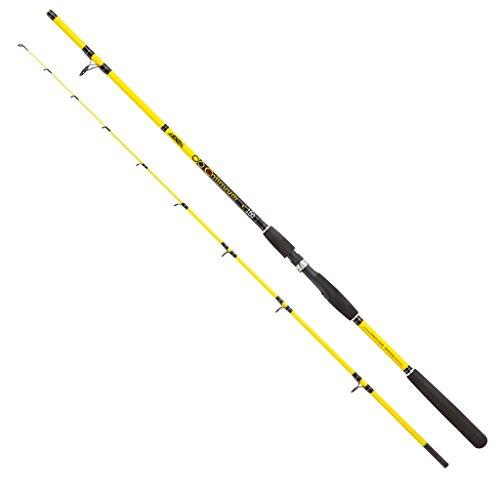 Jenzi Angelrute Continuum, WG: 20-100g, Länge: 3,00m Transportlänge: 156cm, Gewicht: 331g, Teile: 2