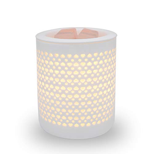 Gaea Electric Candle Wax Warmer White Ceramic Wax Melt Warmer with Dimmer Switch Fragrance Oil Burner Tart Burner Aroma Decorative Lamp for Gifts & Decor Gift for Friend and Family (Pattern 1)