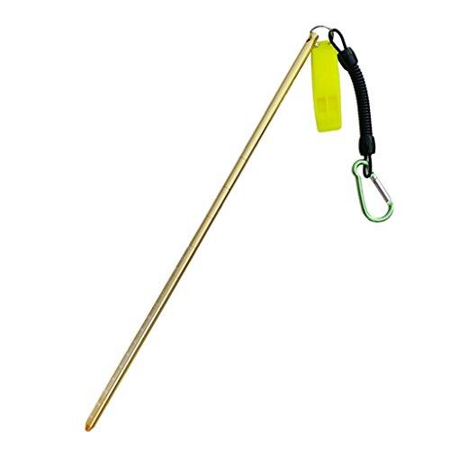 D dolity 34cm aluminio Riff Varilla bajo el agua buceo puntero Diving Pointer Stick con cable en espiral, dorado