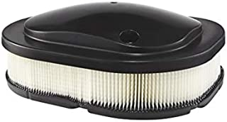 Indian Motorcycle Air Filter,Genuine OEM Part5813976, Qty 1
