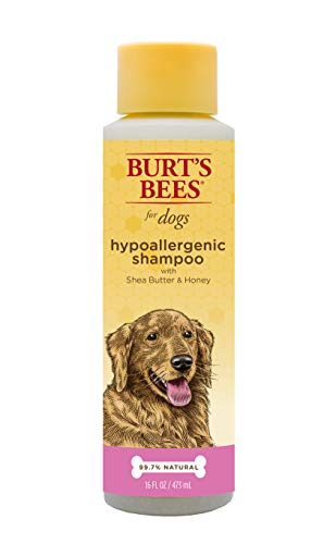 Burt's Bees for Dogs Natural Hypoallergenic Shampoo