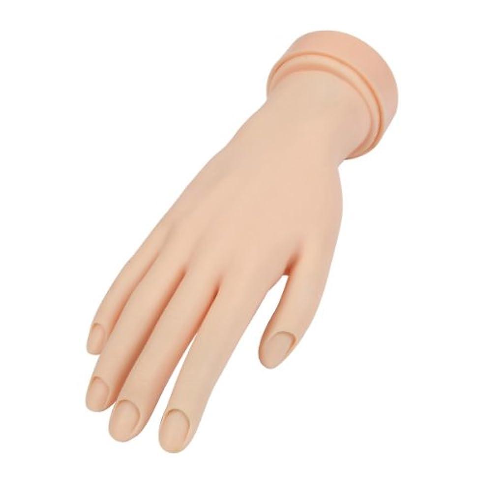 国内のレッドデート惨めなトレーニングハンド (ネイル用) 右手 [ 練習用マネキン 手 指 ハンドマネキン マネキン 施術 トレーニング ]