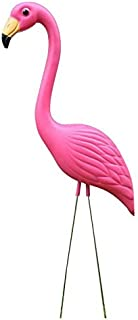 Best as pink as a flamingo Reviews
