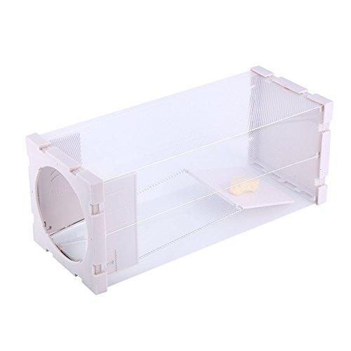 Yosoo Humane Rat Trap Cage Live Animal Catcher Mouse Control de plagas de roedores sin matar sin contaminación, paquete de 2