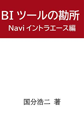 BIツールの勘所 Naviイントラエース編