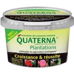 Quaterna Plantations (Boite 100g)