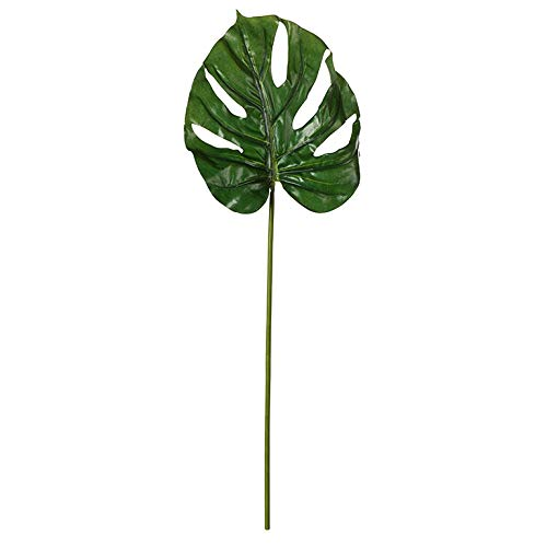 EUROCINSA Ref.60013C54 Hoja Costilla DE ADAN Verde, Caja de 24uds, 68cm