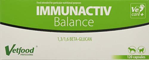 Vetfood Immunactiv Balance |  Stärkung des Immunsystems von Katzen & Hunden| Bei Stress |  Unterstützt nach Krankheit | 120 Kapseln