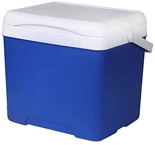 Refrigerador de coche 5L coche portátil enfriadores de hielo camping refrigerador refrigerador coche incubadora regla de pescado para pesca camping barbacoa viajar