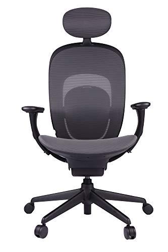 YMI Gamingstuhl Bürostuhl mit Hoher Rückenlehne Schreibtischstuhl verstellbare Kopfstütze Lendenstütze Höhenverstellbarer Gaming Sessel PC Stuhl Ergonomisches Chefsessel mit Armlehne (Schwarz)