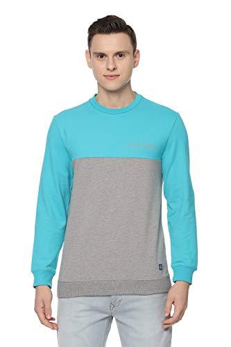 Allen Solly Men's Sweatshirt (ALSTARGFP92342_Grey_XL)