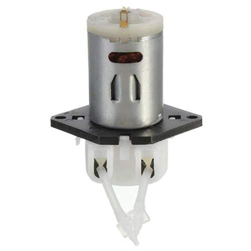 CENPEN Bomba de Agua de la Bomba Sumergible eléctrica de 12V DC Dosificación peristálticas dosificadoras Cabeza F Laborator Laboratorio Analítico de Bricolaje for Piscinas, sótanos inundados, Grandes
