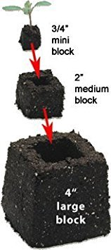 Ladbrooke Genuine Mini 4 Hand-held Soil Blocker - Most Popular Soil Blocking Tool!