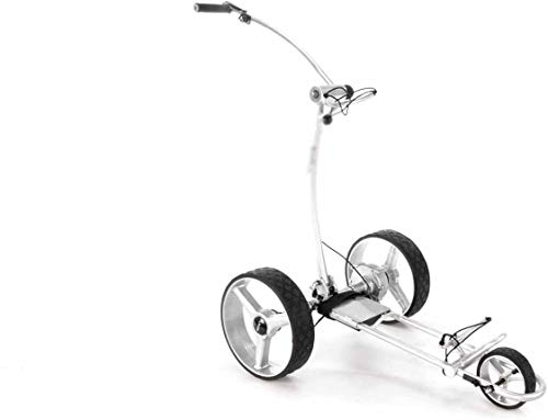 Nuevo nuevo control remoto eléctrico de gama alta golf Carrito de golf eléctrico alquilado,Silver