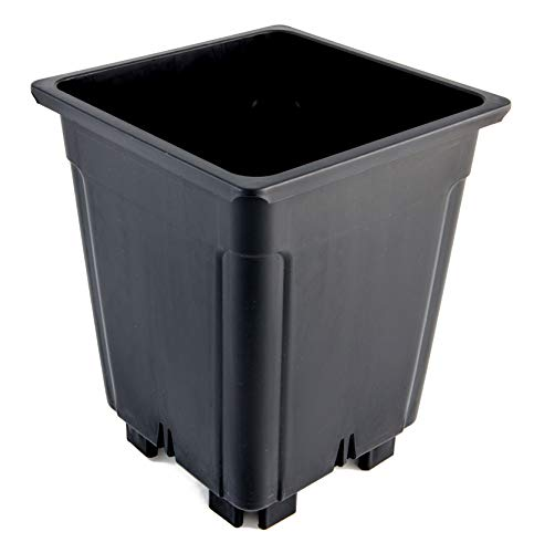 Greenvass 10 x Maceta para Cultivo hidropónico Cuadrada, 7 litros - con elevación de 3 cm. 10 Unidades.