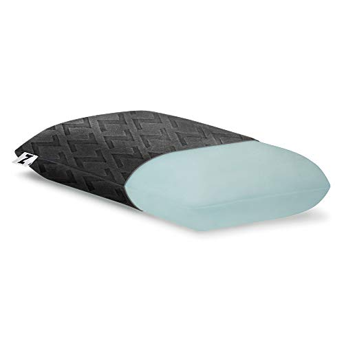 Z Travel Gel Dough Memory Foam Pillow with Removable 100% Rayon from Bamboo Velour Cover - 5-Year Warranty