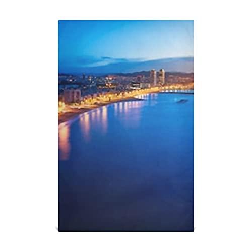 Toallas de cocina de 18 'x 28', decorativas, suaves y absorbentes, para platos Toallas de mano de tela, para cocina, fregadero, mesa de comedor, etc., vista aérea de la playa de Barcelona, noche de