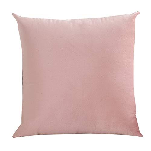 gszfsm001 - Funda de almohada de terciopelo sólido, funda de almohada suave para sofá, cama, salón, dormitorio, coche