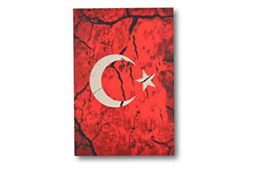 Gök-Türk WTD - Cuadro decorativo para salón, oficina, diseño de media luna con estrella, color rojo