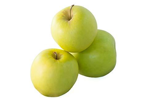 Golden Delicious Äpfel süß in 10 kg Kiste Neue Ernte Deutschland 2019