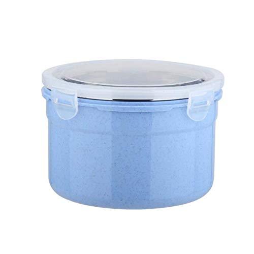 WSGZH Trennbare Edelstahlschüssel und Plastikschüssel Salatschüssel-Verschluss-Nahrungsmittelaufbewahrungsschüssel, beheizbare Küchengeschirr-Schüssel, die für im Freien dient