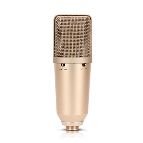 TWDYC Micrófono de Condensador de Gran diafragma Profesional de Alta sensibilidad para grabación en Directo