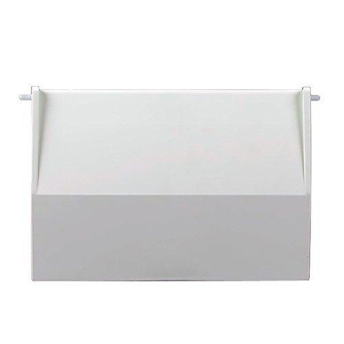 Astral - Compuerta de skimmer para piscina, de color blanco, se incluye el perno