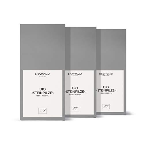Steinpilze-Getrocknet-Bio (3x 100 g)